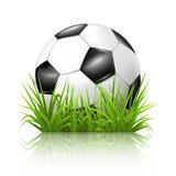 Fußballkugel auf Gras Lizenzfreie Stockfotografie
