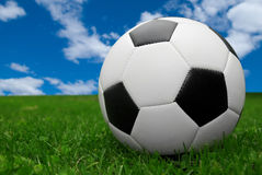 Fußballkugel auf Gras Stockfoto