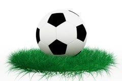Fußballkugel auf Gras lizenzfreie abbildung