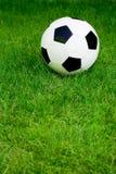 Fußballkugel auf Gras Stockfotos