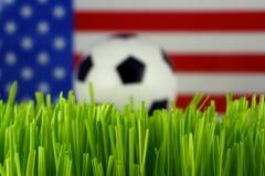 Fußballkugel im Gras Lizenzfreie Stockbilder