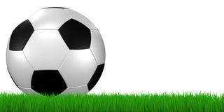 Fußballkugel im Gras - Ausschnitt Stockbilder