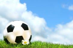 Fußballkugel mit Gänseblümchen Stockfotografie