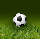 Fußballkugel und -gras Stockbild