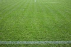 Fußballplatz mit grünem Gras Stockfotografie