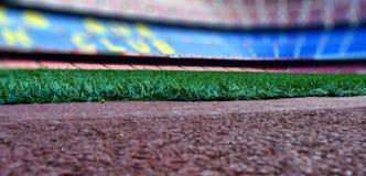 Fußballplatzgras Stockbild