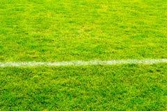 Fußballrasenfläche Lizenzfreie Stockfotos