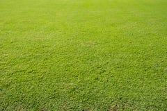 Fußballrasenfläche stockfotografie