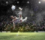 Fußballspieler, der die Kugel schlägt Lizenzfreies Stockbild
