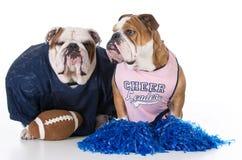 Fußballspieler und Cheerleader Stockbild