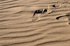 Fußdruck Lizenzfreie Stockbilder