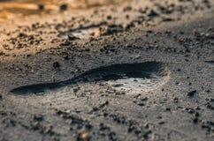 Fußdruck im Sand auf dem Strand lizenzfreies stockbild