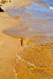 Fußdrucke im Sand Lizenzfreie Stockfotografie