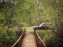 Fußgängerbrücke über dem Flusswald lizenzfreie stockfotografie