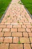 Fußpfad Stockbilder