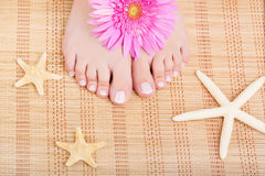 Fußpflege Stockbilder