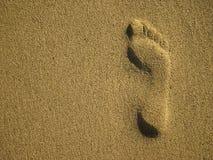 Fußspur im Sand Stockbilder