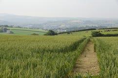 Fußweg über Ackerland Stockbilder
