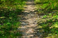 Fußweg Stockbild