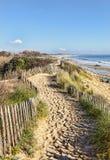Fußweg auf der atlantischen Düne in Bretagne lizenzfreies stockfoto