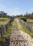 Fußweg auf der atlantischen Düne in Bretagne Stockfotos