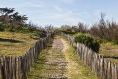 Fußweg auf der atlantischen Düne in Bretagne lizenzfreies stockbild