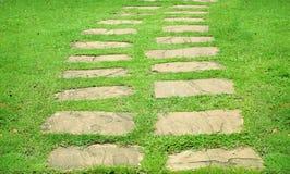 Fußweg auf Rasen Stockbild