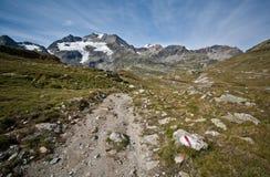 Fußweg in den Alpen Stockbild