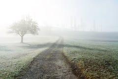 Fußweg an der nebeligen Landschaft Lizenzfreie Stockfotos