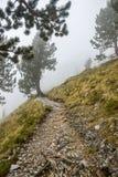 Fußweg in der Wolke E4 der Olymp Griechenland stockfotografie