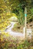 Fußweg, der zu einen belaubten Weg führt Stockbild
