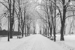 Fußweg in einem fabelhaften Winterstadtpark Stockfotos