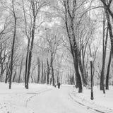 Fußweg in einem fabelhaften Winterstadtpark Lizenzfreie Stockfotografie