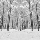 Fußweg in einem fabelhaften Winterstadtpark Stockfoto