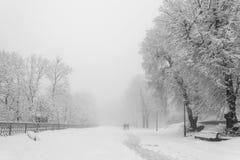 Fußweg in einem fabelhaften Winterstadtpark Lizenzfreies Stockbild