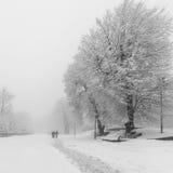 Fußweg in einem fabelhaften Winterstadtpark Stockbild