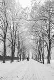 Fußweg in einem fabelhaften Winterstadtpark Lizenzfreie Stockbilder
