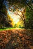 Fußweg in einem malerischen Herbstherbstpark Lizenzfreie Stockfotos