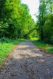Fußweg in einem Park Lizenzfreies Stockfoto
