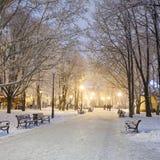 Fußweg in einem Winterstadtpark Stockbilder