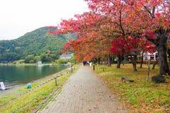 Fußweg entlang Kawaguchiko See Stockbilder