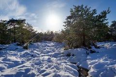 Fußweg Gorges de Franchard unter Schnee in Fontainebleau-Wald stockfotos