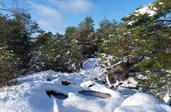 Fußweg Gorges de Franchard unter Schnee in Fontainebleau-Wald lizenzfreie stockfotografie