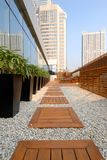 Fußweg im Dachgarten Stockbilder