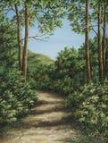 Fußweg im Gebirgsholz Stockbild