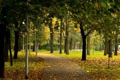 Fußweg im Herbstpark Lizenzfreie Stockbilder