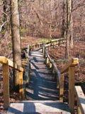 Fußweg im Wald Lizenzfreie Stockbilder