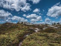 Fußweg, kleine Elch-Insel Stockbilder