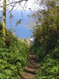Fußweg zum Meer Stockfoto