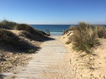 Fußweg zum Strand stockbild